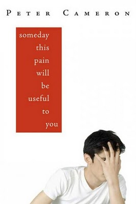 'Someday This Pain Will Be Useful to You' by Peter Cameron