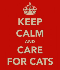 'Keep Calm and Care for Cats' poster