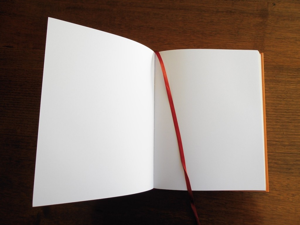 blank book pages in journal