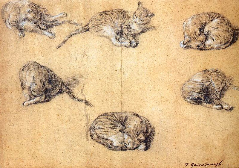 'Six studies of a cat' by Thomas Gainsborough