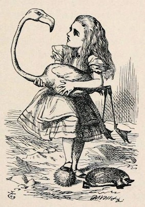 'Alice's Adventures in Wonderland', illustrated by John Tenniel