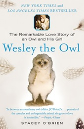 'Wesley the Owl' by Stacey O'Brien