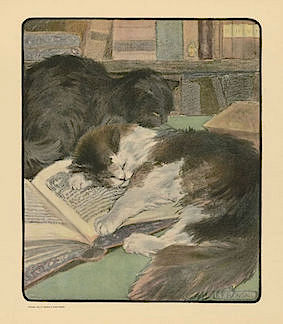 'Napping Cat' by Elizabeth Fearne Bonsall (1903)